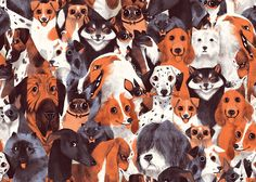 Chervelle Fryer's A Pack of Dogs on Behance