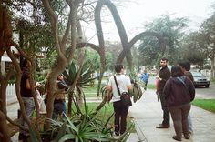 proyecto de historia del diseño peruano