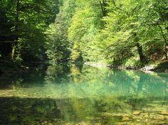 Spring of river Kupa in national park Risnjak, Croatia