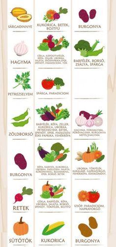 A valaha volt legfontosabb táblázat, amit konyhakertész látott. Planting Vegetables, Companion Planting, Permaculture, Health And Nutrition, Gardening Tips, Herbs, Backyard, Fruit, Healthy