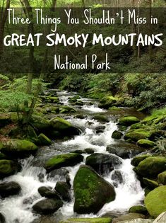 Three must-sees in Great Smoky Mountains National Park: Cades Cove, Clingmans Dome & waterfalls Smoky Mountain National Park, Smokey Mountain, Smoky Mtns, Great Smoky National Park, Places To Travel, Places To See, Tennessee Vacation, Gatlinburg Tennessee, Visit Tennessee