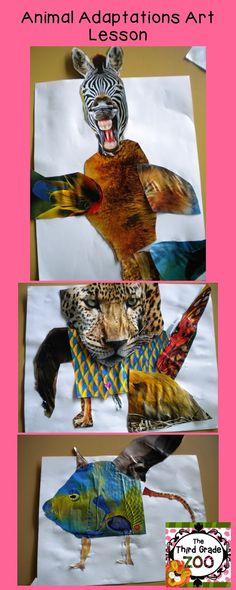 The Third Grade Zoo: Animal Adaptations Art Lesson