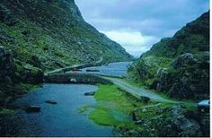 Kingfisher Walks, Ireland.