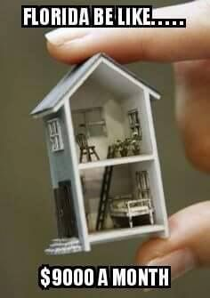 a miniature doll house? well why not a miniature miniature doll house? Miniature Rooms, Miniature Crafts, Miniature Houses, Miniature Furniture, Dollhouse Furniture, Barbie Furniture, Tiny Dolls, Mini Things, Small Things