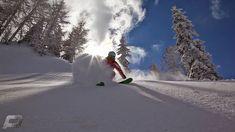 Siegi Tours Holiday Austria - Ski with the Expert and Learn to ski and Snowboard Safari, Ski Holidays, 45 Years, Ski And Snowboard, Golf Tips, Cross Country, Location, Austria, Skiing