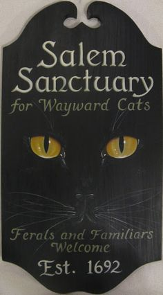 """Musings from Behind the Easel: """"The Salem Sanctuary for Wayward Cats"""""""