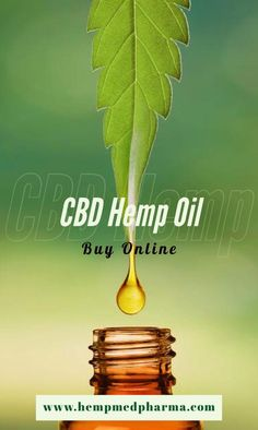🌿CBD Hemp Oil Products🛍 Grown & Processed Hemp Products for Health🤒- Skin 👩- Anti-Aging 🍎- Nutrition 🐕- For Pets & more! Cbd Hemp Oil, Cannabis, Anti Aging, Seeds, Nutrition, Health, Health Care, Ganja, Salud