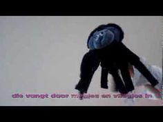 Spinnen: liedje 'De spin wiedewin' - YouTube