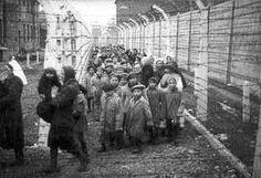 Niños en campo de concentración