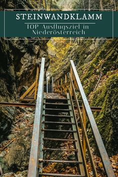 Steinwandklamm – The special destination in Lower Austria Places To Travel, Places To See, Travel Destinations, Reisen In Europa, Homeland, Day Trip, Austria, Adventure Travel, The Good Place