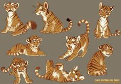 <3 .tiger expressions sheet