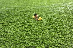 Soil survey paints China's sobering pollution picture http://executivesalad.com/2014/11/06/soil-survey-paints-chinas-sobering-pollution-picture/ #China #News #ExecutiveSalad
