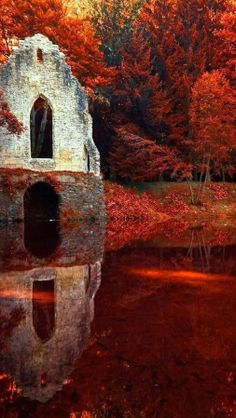 Red autumn, Chamonix, France