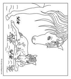 kleurplaat paard met hartjes paarden summer