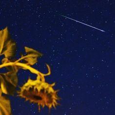 nagykanizsa perseidák meteorraj
