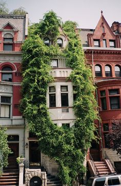 the plant journal Beautiful Buildings, Beautiful Homes, Beautiful Places, Exterior Design, Interior And Exterior, Voyage New York, Decoration Plante, Lofts, My Dream Home