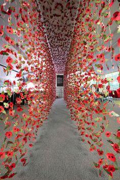 A Corridor Filled by 8000 Paper Poppies  Depuis 1921, on se remémore des soldats anglais de la Première Guerre Mondiale avec des coquelicots. L'artiste Rebecca Louise Law a réalisé deux rideaux de 8000 coquelicots rouges en papier, cousus et installés dans la librairie Guildhall, à Londres. Les pans de fleurs mènent au célèbre poème « In Flanders Field » de John McCrae, gravé sur une plaque, qui a inspiré l'utilisation des coquelicots pour les commémorations.