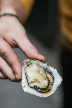 Paris Producers Fête - D. Lebovitz - However I didn't pass up an oyster that someone from the coffee shop handed me, a lone bivalve that was resting in a puddle of Japanese whisky.