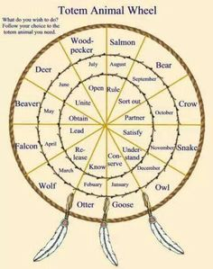 Native American Animal Spirit Guides   Pinned by Barbara Konwinski
