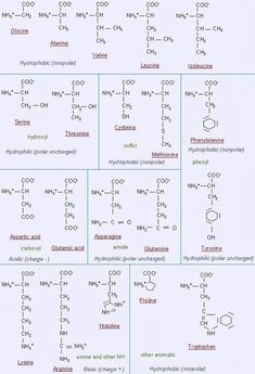 200 Chemistry Class Ideas In 2021 Chemistry Class Chemistry Chemistry Notes
