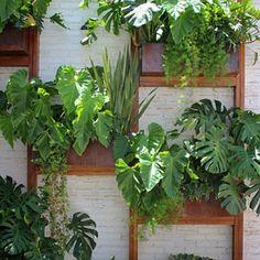 Jardim Vertical diferenciado! Projeto e Implantação por #folhapaisagismo  Email para contato: contato@folhapaisagismo.com.br   Differentiated Vertical Garden! Design and Implementation by #folhapaisagismo