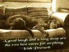 A good laugh and long sleep are two best cures for everything!