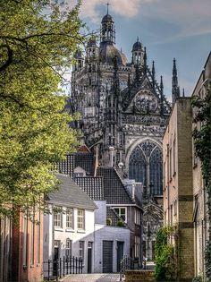 Vanaf de Boerenmouw: De Sint Janskathedraal te Den Bosch.