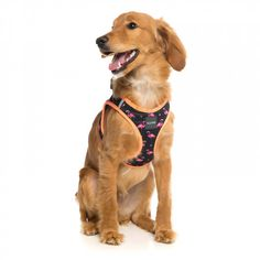 Fabmingo Step In Dog Harness