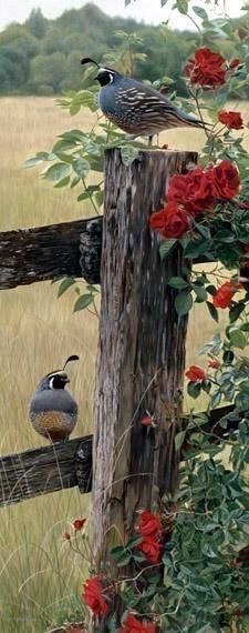 It's a beautiful world!