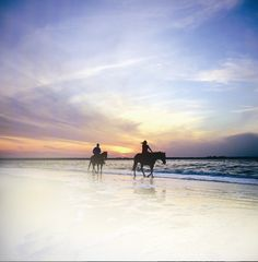#Amelia Island State Park is one of the few spots in the country where you can still saddle up on the sand.