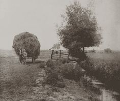 In The Heysel. Norfolk Peter Henry Emerson