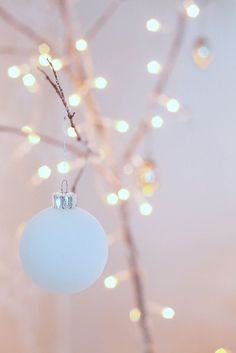 We supply the world with 'all things Christmas and more'.see us for all your decor and lighting needs. From Christmas to Halloween to Valentines Day, we've got you covered! Christmas Mood, Noel Christmas, Merry Little Christmas, Pink Christmas, All Things Christmas, Christmas Lights, Christmas Decorations, Christmas Ornaments, Gold Ornaments