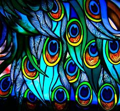 stained glass peacock feathers