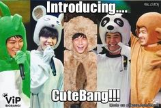 Cute Bang? um ... might want to ... want to re-think that name there you guys ...