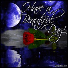 Have a Beautiful Day | Glitter Graphic Comment: Have A Beautiful Day Moon Rose Reflection