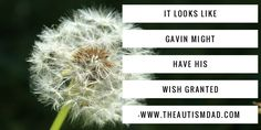 (It looks like Gavin might have his wish granted )   By: Rob Gorski  https://www.theautismdad.com/2017/07/27/it-looks-like-gavin-might-have-his-wish-granted/  #Adhd, #Anxiety, #Aspergers, #Autism, #Bipolar, #CaregiverBurnout, #ChildhoodDisintegrativeDisorder, #CommonVariableImmunodeficiency, #Dad, #Depression, #Family, #GAMMAGARD, #Insomnia, #IVIG, #Meltdowns, #Parenting, #Schizoaffective, #Schizophrenia, #Sensory, #SpecialNeeds, #SpecialNeedsParenting