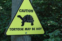 Naturally. | 25 Funny Animal Signs