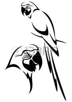 tropical parrot and bird head black and white vector outline photo