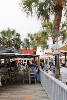 Salty Dog Cafe -- Must do while in Hilton Head! Hilton Head Beach, Hilton Head Island, Salty Dog Hilton Head, Florida Vacation Spots, Family Vacation Destinations, Hilton Head South Carolina, Carolina Beach, Salty Dog Cafe, Outdoor Seating