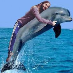 "Pin for Later: 19 Amazing Jared ""Huggin"" Leto Memes Jared Hugging a Dolphin Source: Instagram user letostagram"
