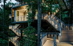 modern tree house architecture - Google Search