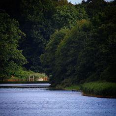 August morgen ved Søholm Sø... #visitdenmark #fyn #nature #nature_perfection #naturelovers #mothernature #natur #denmark #danmark #dänemark #landscape #assensnatur #assens #mitassens #nofilter #fynerfin #vielskernaturen #visitassens #instapic #picoftheday #sommer #summer2016 #lake
