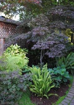 Have a shady spot in your yard? You will love these stunning and inspiring shade gardens and find some fantastic plant suggestions for shady spaces. #gardenshrubsshade #cottagegardenshrubs #frontgardenshrubs #LandscapeShrubs