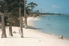 1990 North Beach, Horn Island