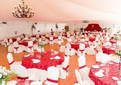 Vista hacia la mesa presidencial de nuestra carpa climatizada con una decoración en color burdeos y centros florales naturales en alto
