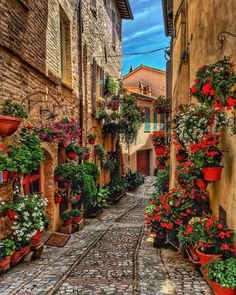 Spello is an ancient town and comune of Italy, in the province of Perugia in east central Umbria Beautiful Places To Travel, Beautiful World, Beautiful Streets, Wonderful Places, Romantic Travel, Villefranche Sur Mer, Reisen In Europa, Travel Aesthetic, Adventure Is Out There