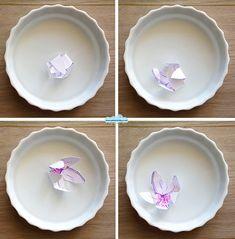 I fiori magici che sbocciano in acqua  -  The magic paper flowers