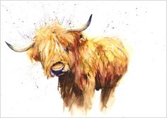 helen rose limited print of my highland cow animal art watercolour Highland Cow Painting, Highland Cow Art, Highland Cattle, Watercolor Animals, Watercolor Art, Watercolour Paintings, Galloway, Print Artist, Artist Painting