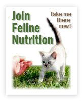 Rice Isn't Nice - Feline Nutrition