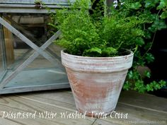 "Great tutorial on how to ""age"" a brand new terracotta pot! Must try for our indoor herb garden"